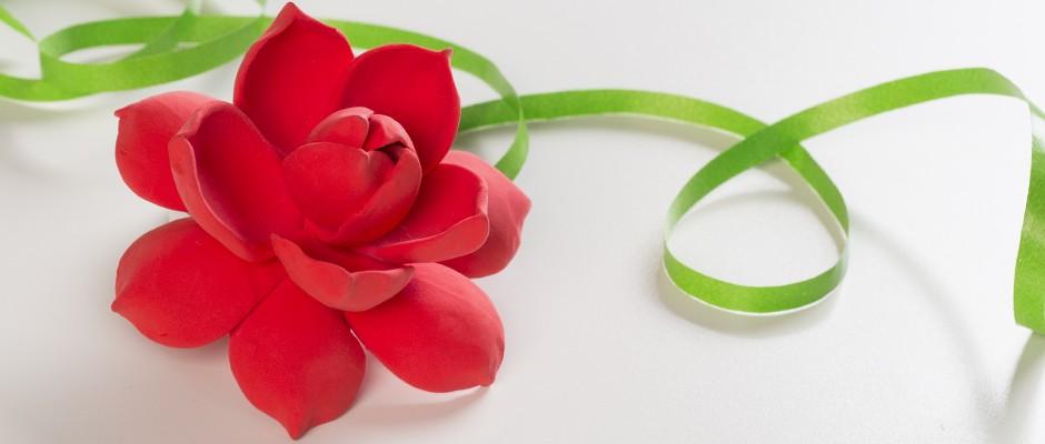 Sanat Kili ile Yaka Çiçeği Yapımı